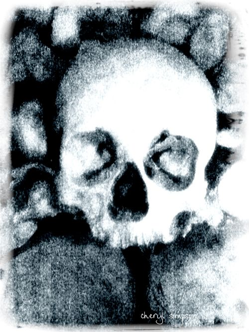 Catacombs-Skull-disposible-