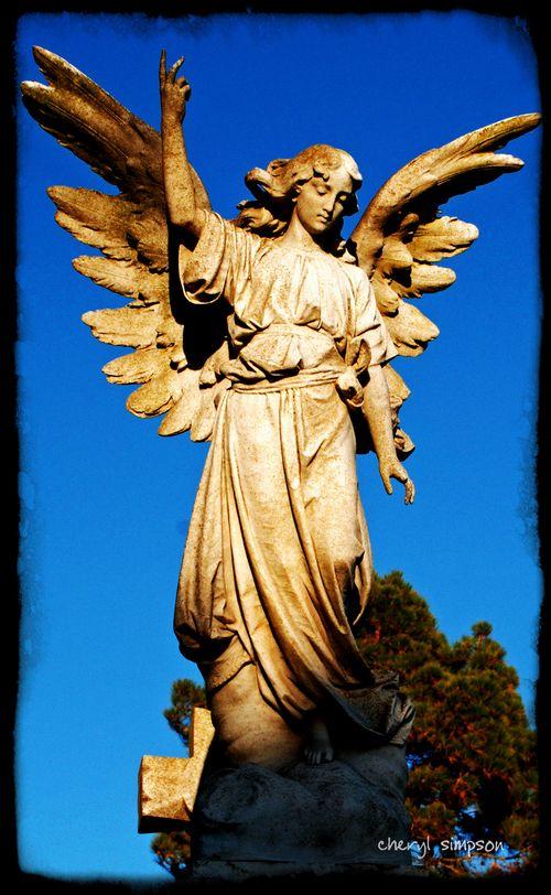 Angel-16