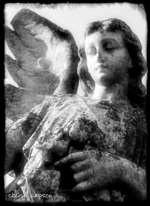Angel-12