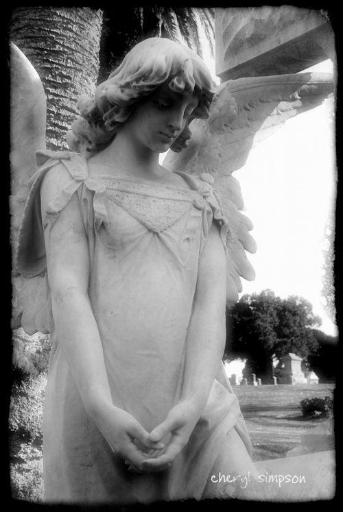 Angel-8