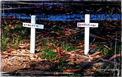 Wooden-crosses