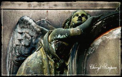 Glasgow-Necropolis-2