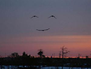 Smilefromgod_2